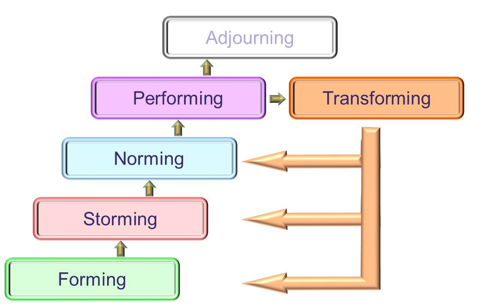 tuckmantransforming